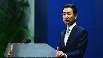 耿爽(外交部网站)