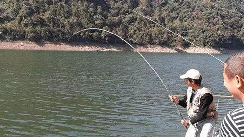 新疆500水库可以钓鱼吗