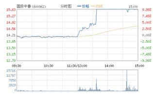国投中国股票趋势分析