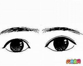 卡通人物眼睛简笔画
