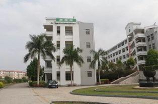 天福茶叶学院