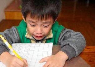 小学生考场大哭,我的名字有 88 笔,网友 老师都看呆住了