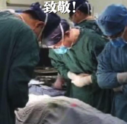 能用的,都捐,24岁研究生去世捐献器官救5人