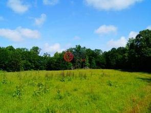 美国密西西比州亚祖城的房产USD 767,000 美国房产密西西比州亚祖城房产房价 居外网