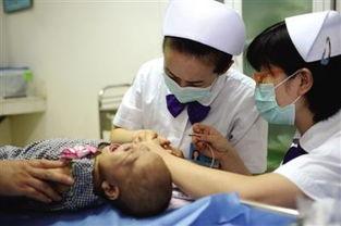 原标题:2岁女孩离世捐肝救活7月大孤儿昨日,武警总医院医护人员为小咪抽血做检查。