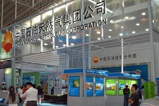 中国石油天然气三大公司:中石油,中石化,中海油在中国上市股票名称和代号是什么?