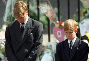 威廉王子有多想念戴安娜孩子对母亲最真挚的思念