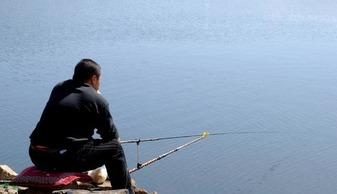 钓鱼一四季都可以吗