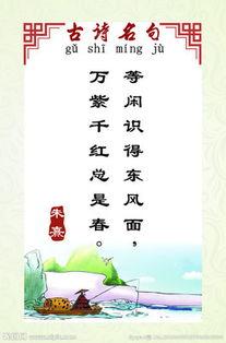 初中班主任引用古诗名句的文章
