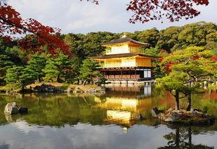 京都有哪些著名景点