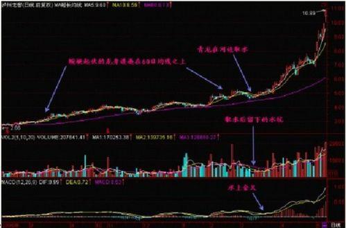 如何买到黑马股票?