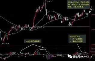 什么是股票的双龙齐飞?