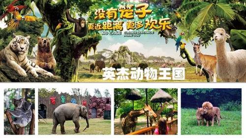 为黑龙江省的旅游经济,宾县县域经济发展做出新的贡献.