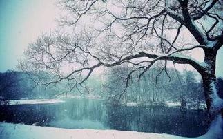 关于雪的唯美诗词