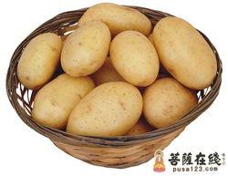 煮土豆的技巧 土豆的健康营养煮法