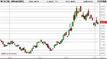 小麦期货价格行情今日小幅上涨