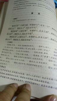 蒹葭作文400字