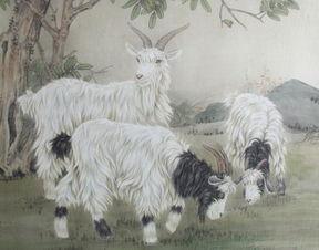 属羊的人出生66财运