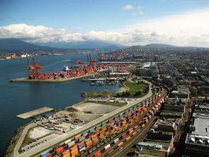 青岛港集装箱码头