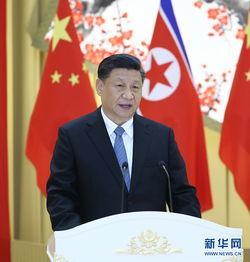习近平出席朝鲜劳动党委员长 国务委员会委员长金正恩举行的欢迎宴会