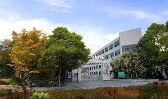 杭州都有哪些职业大学