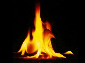 女孩五行缺木和火