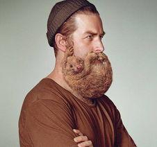 胡须上的艺术 当胡须变成萌宠