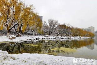 传统节气:[1]小雪