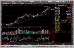 个股期权交易平台有哪些股票 个股
