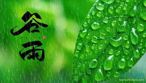 描写谷雨的好句_描写谷雨的好词好句