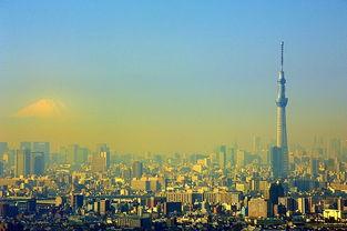 到东京旅游自由行攻略