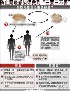 甘肃玉门市发现一例鼠疫病例