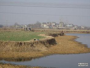 上海那里有大河可以钓鱼