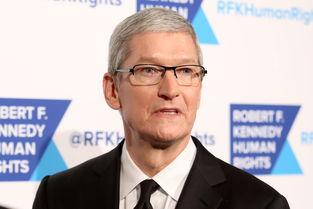 库克出任苹果ceo五周年,一亿美元股票奖励到位