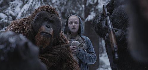 图说:《猩球崛起3:终极之战》剧照网络图