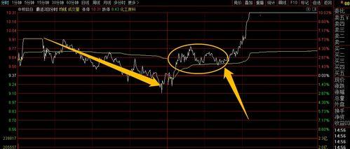 网上炒股票是真的吗
