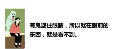 大粤港谚语图