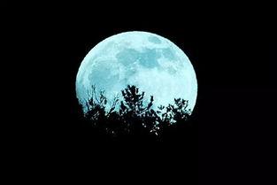 和月亮有关的美好诗句