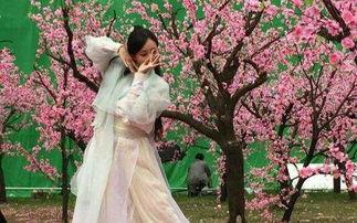 国内影视剧女星古装舞蹈大盘点,谁跳得最美