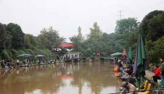 重庆市南岸区哪里可以钓鱼