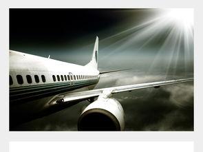 航空运输服务业有哪些专业