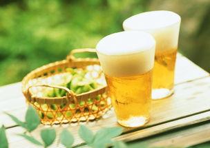 和啤酒有关的股票有哪些