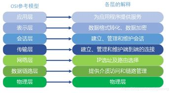 计算机三级网络技术基础知识