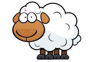 67羊人20丨9财运
