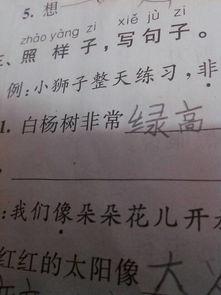 有关写杨树的诗句