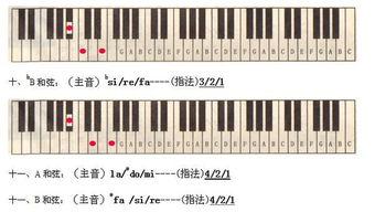 电子琴的五行