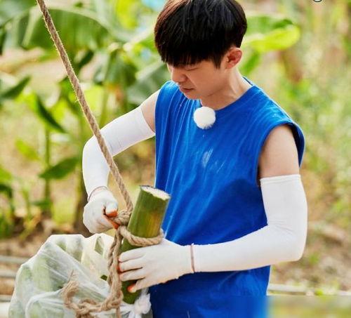 向往的生活4彭昱畅解除了做饭啥都会解锁新技能徒手爬椰子树,太厉害了