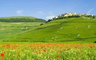 寫出四個描寫草原美景的詞語