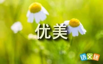 描写杏子优美句子