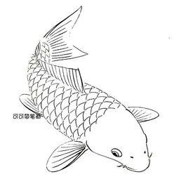简笔画鲤鱼旗